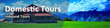 domestic tours