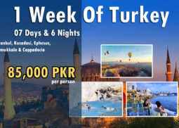 1 Week of Turkey