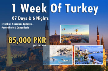 1 Week of Turkey