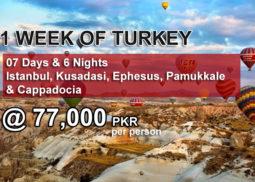 1 week turkey package