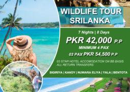 Wildlife Tour Sri lanka